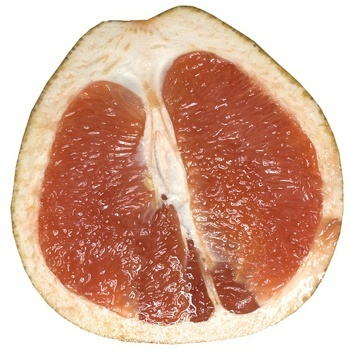 grapefruit for juice