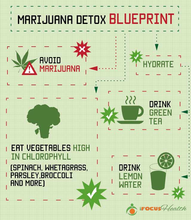 marijuana detox blueprint