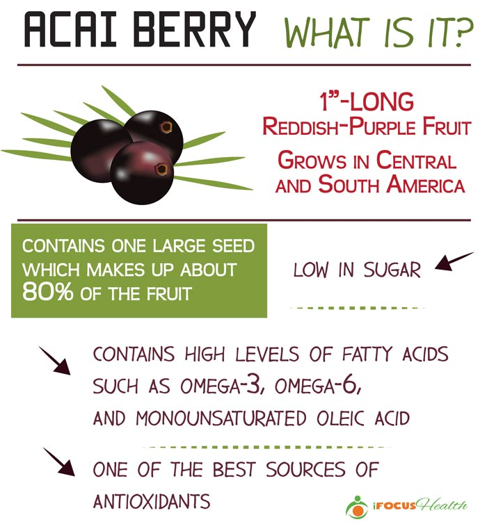 what is acai berry infographic