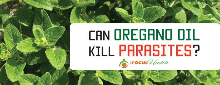 does oregano oil kill parasites