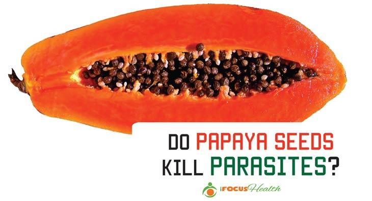 do papaya seeds kill parasites