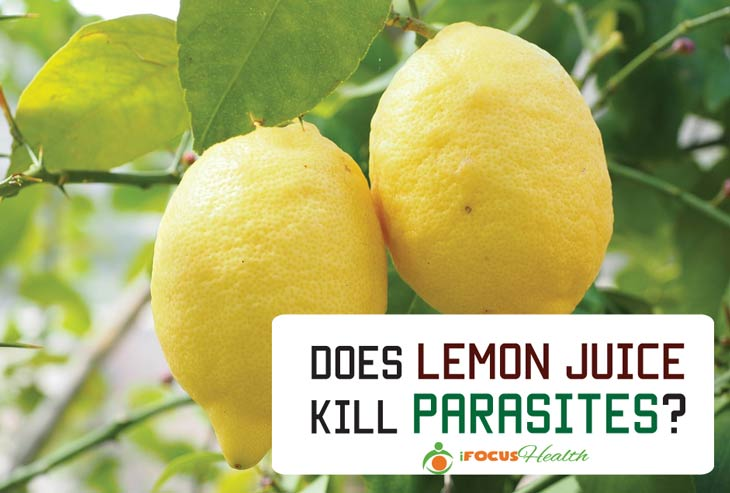 does lemon juice kill parasites