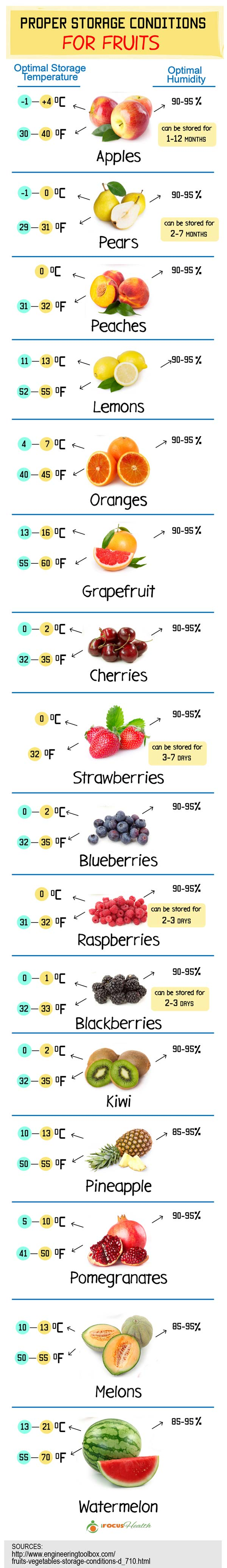 recommended storage conditions for fruits infographic