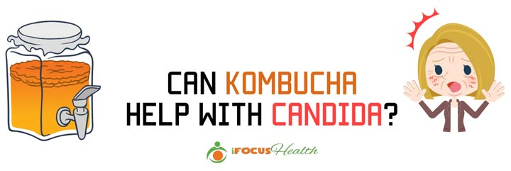 kombucha for candida