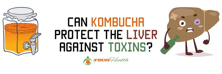 kombucha for liver
