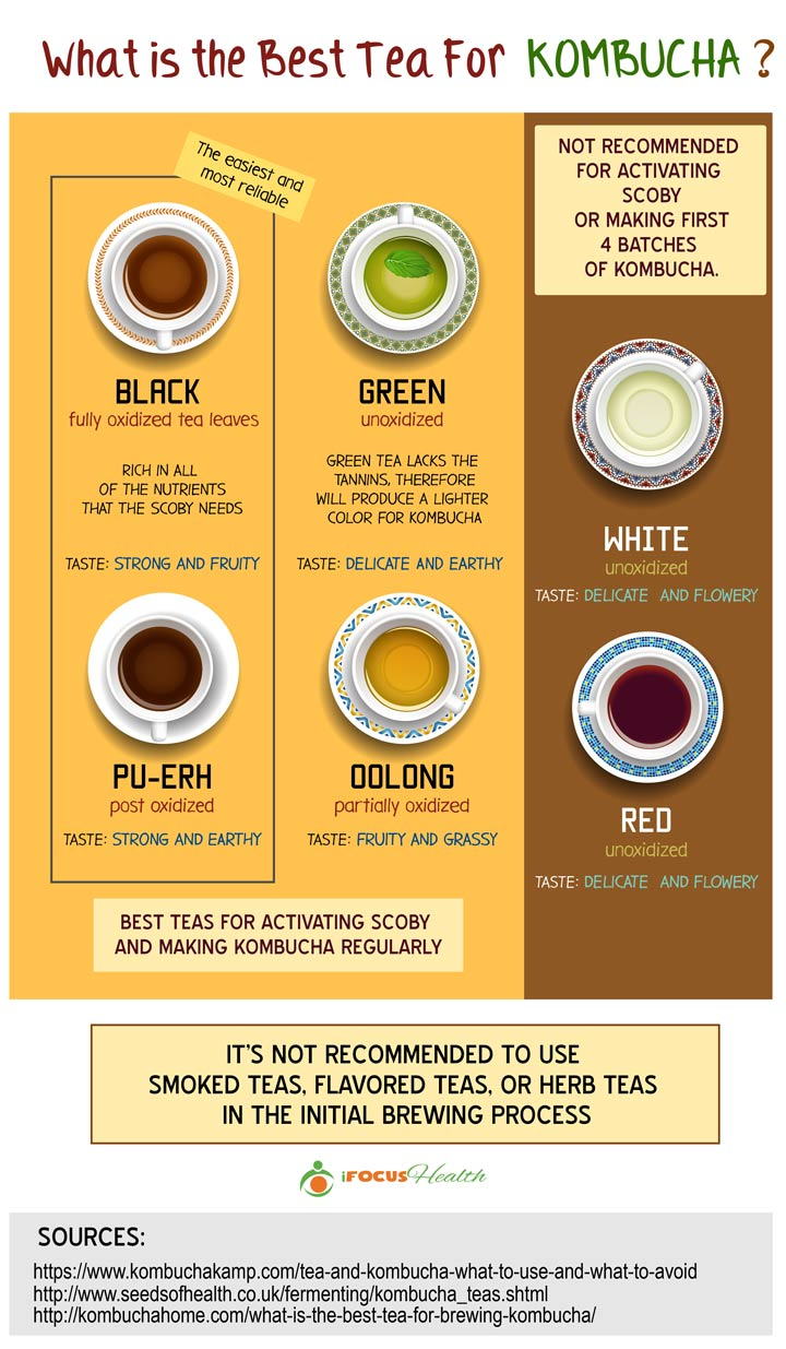 best tea for kombucha infographic