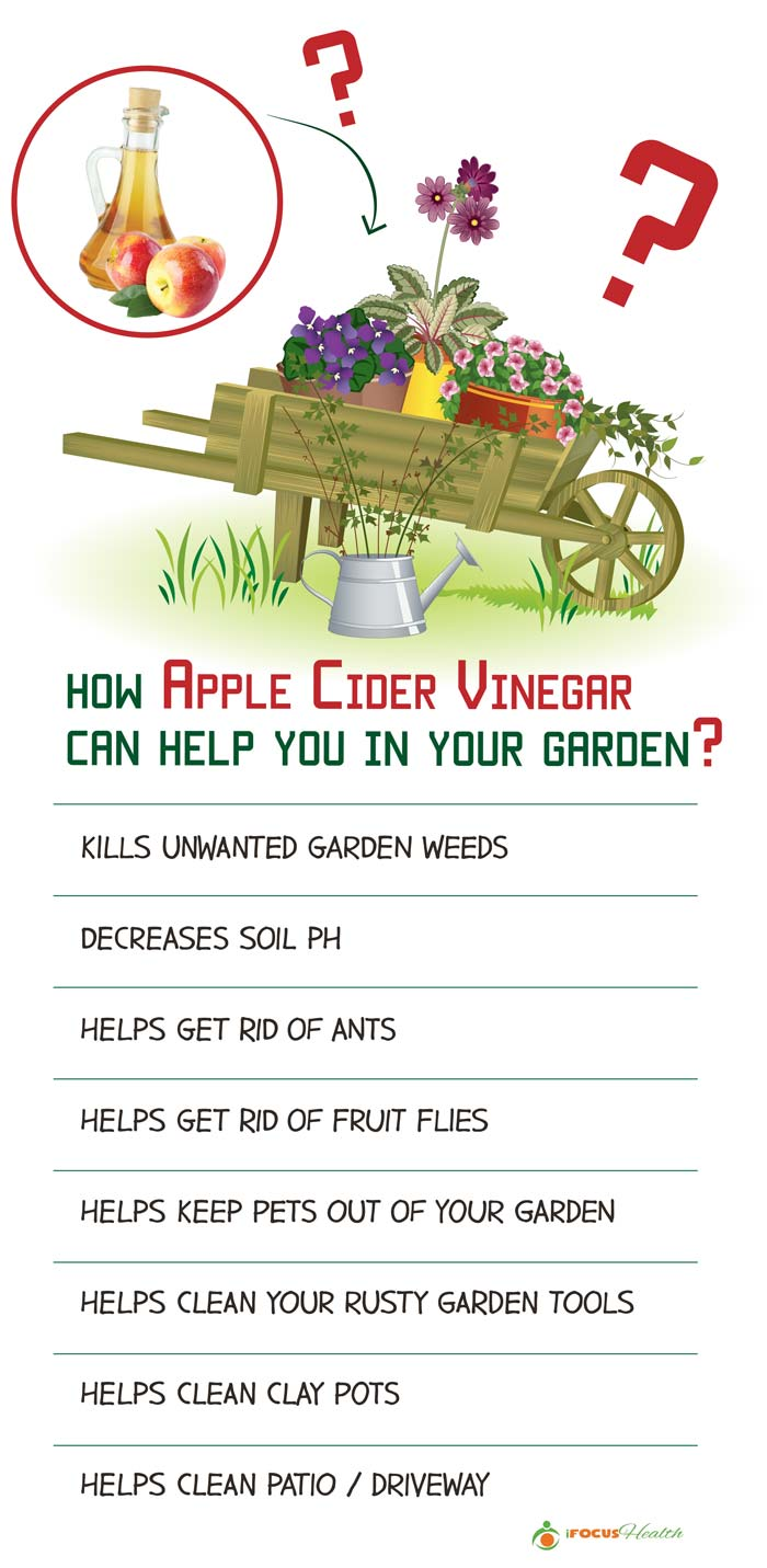 how to use apple cider vinegar in the garden